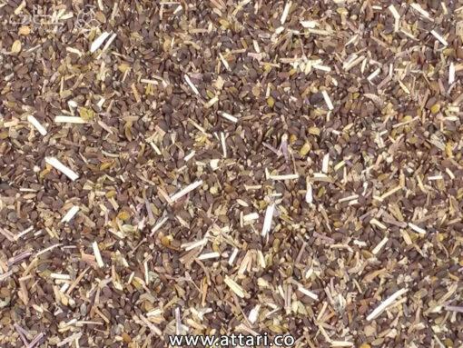بذر بادرنجبویه