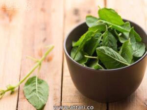 گیاه تولسی